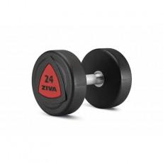 ZIVA URETANINIŲ HANTELIŲ KOMPLEKTAS 2 x 2-20 kg