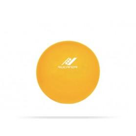 Gimnastikos kamuolys RUCANOR, 45 cm