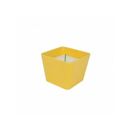 "Žvakė ""Bamboo SWEET CINNAMON"""