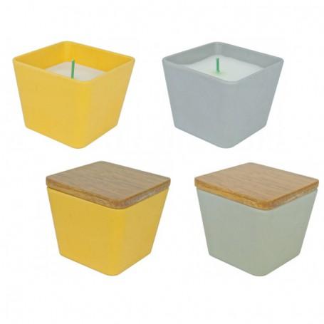 """Žvakė """"Bamboo"""""""