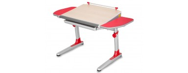 Rašomieji stalai ir staliukai